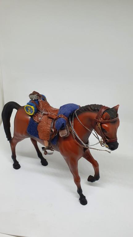 2_caballo_1606073199_595037