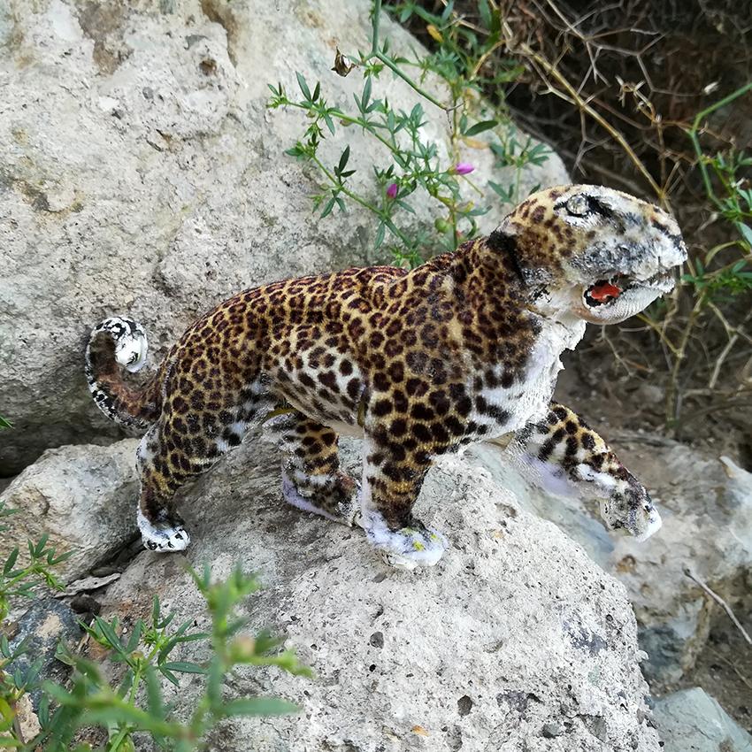 leopardo_de_cerca
